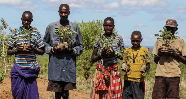 90 alberi da frutto nel Nord dell'Uganda - Insieme si può