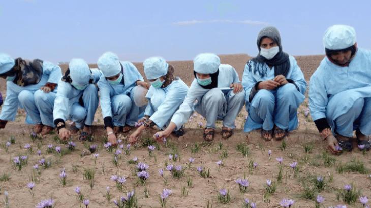 """""""Zafferano per le donne afghane"""" Insieme si può"""